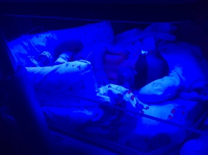 Chillin' under the bilirubin lights.